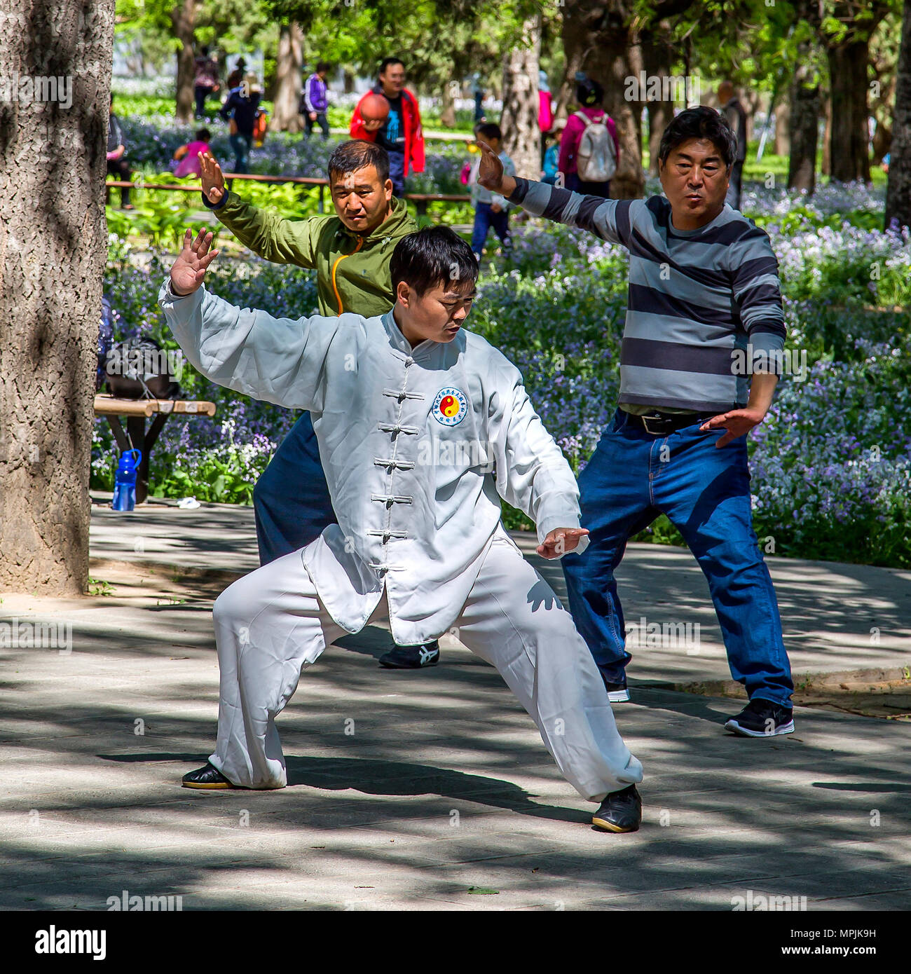 2913f730e A Tai Chi instructor with his students in Beijing Park, China - Stock Image