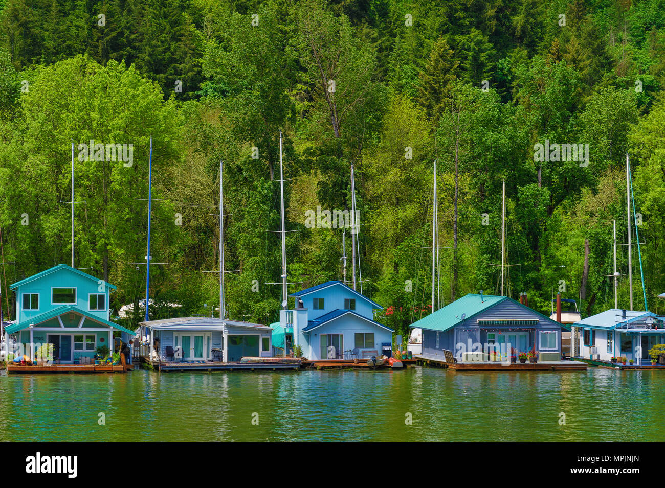 Sauvie Island, Oregon,USA - May 10, 2018:  Floating homes on the Multnomah Channel of the Willamette River near Portland, Oregon - Stock Image