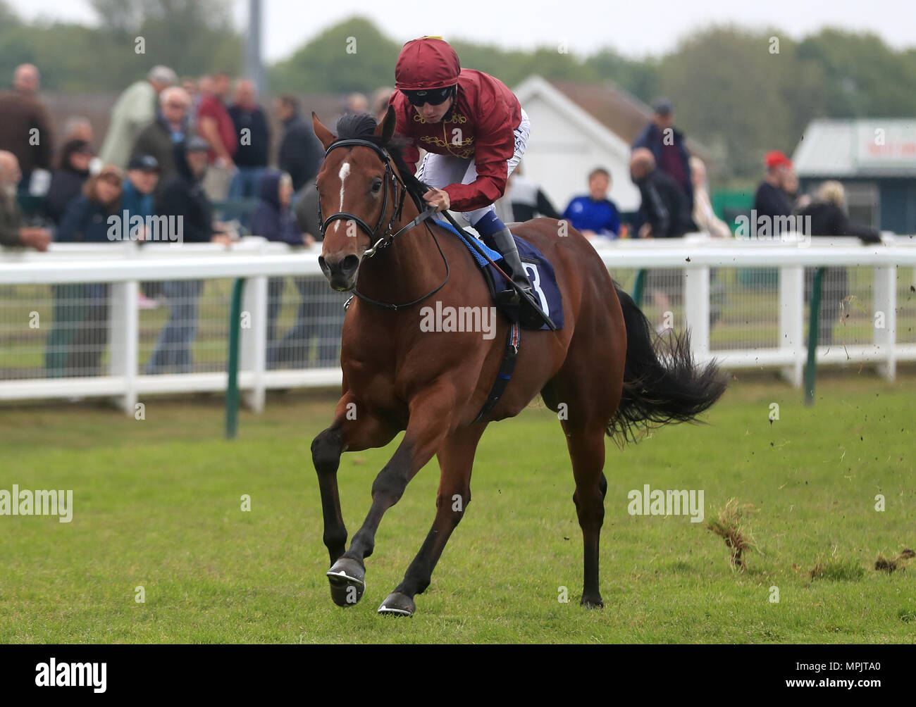 Legends of War ridden by Oisin Murphy go on to win The British Stallion Studs EBF Novice Stakes at Yarmouth Racecourse. - Stock Image