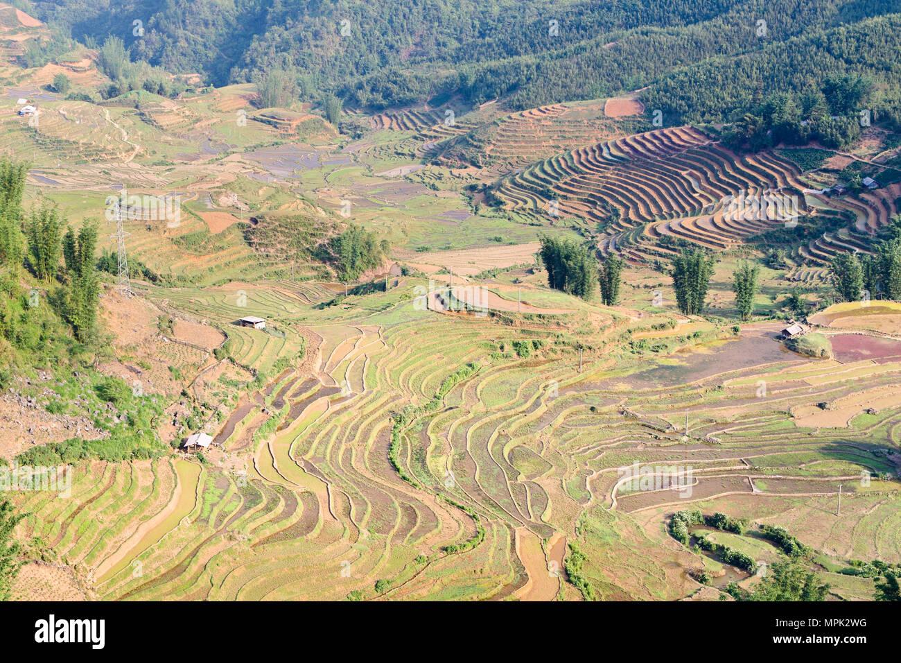 Rice terraces, Sapa, Vietnam - Stock Image