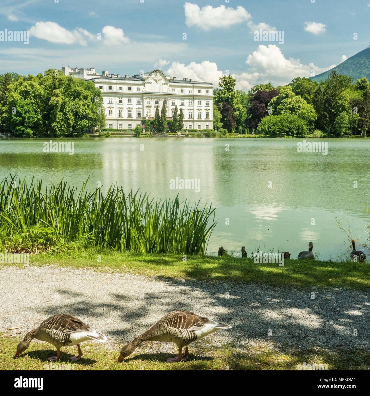 The rococo styled 'Leopoldskron Palace', Salzburg, Austria. Location for the lake shots in the musical film 'The Sound of Music' - Stock Image