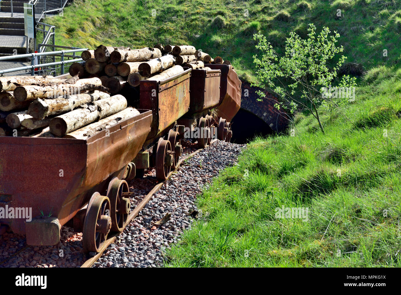 Railway mine carts loaded with wooden pit props going into mine shaft at Big Pit: National Coal Museum, South Wales Valleys, Blaenavon, UK - Stock Image
