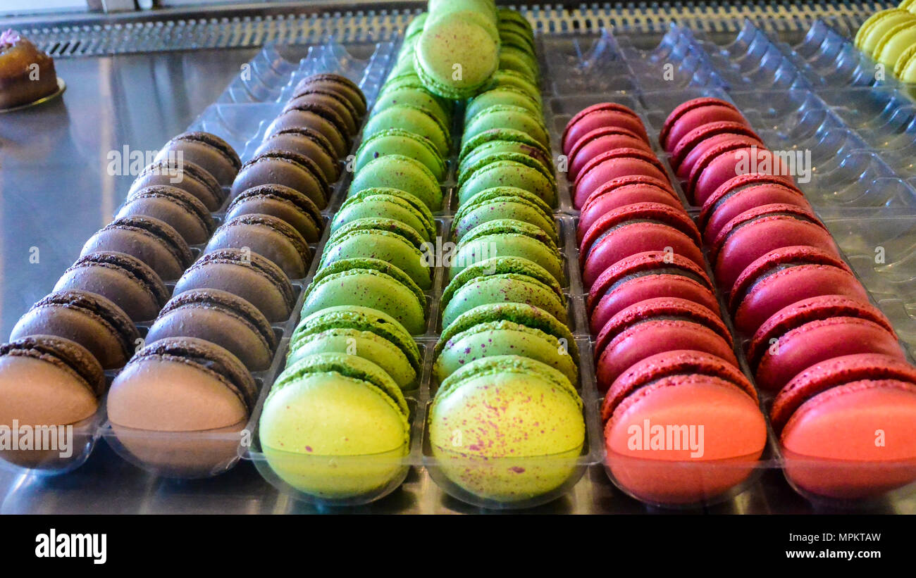 Lines of coloured macarons - Stock Image
