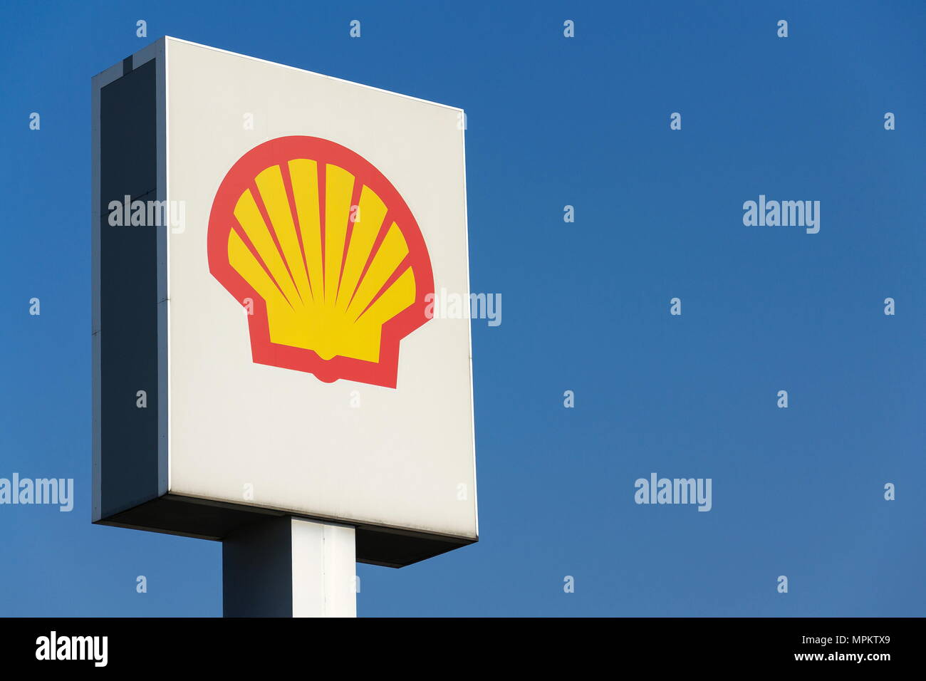royal dutch shell international