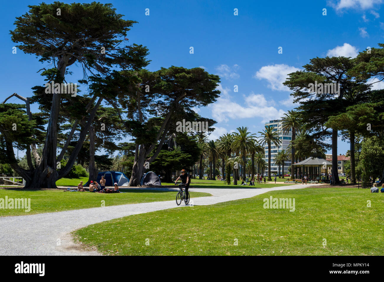 Christmas Camping Australia.People Cycling Camping And Relaxing In Catani Gardens On