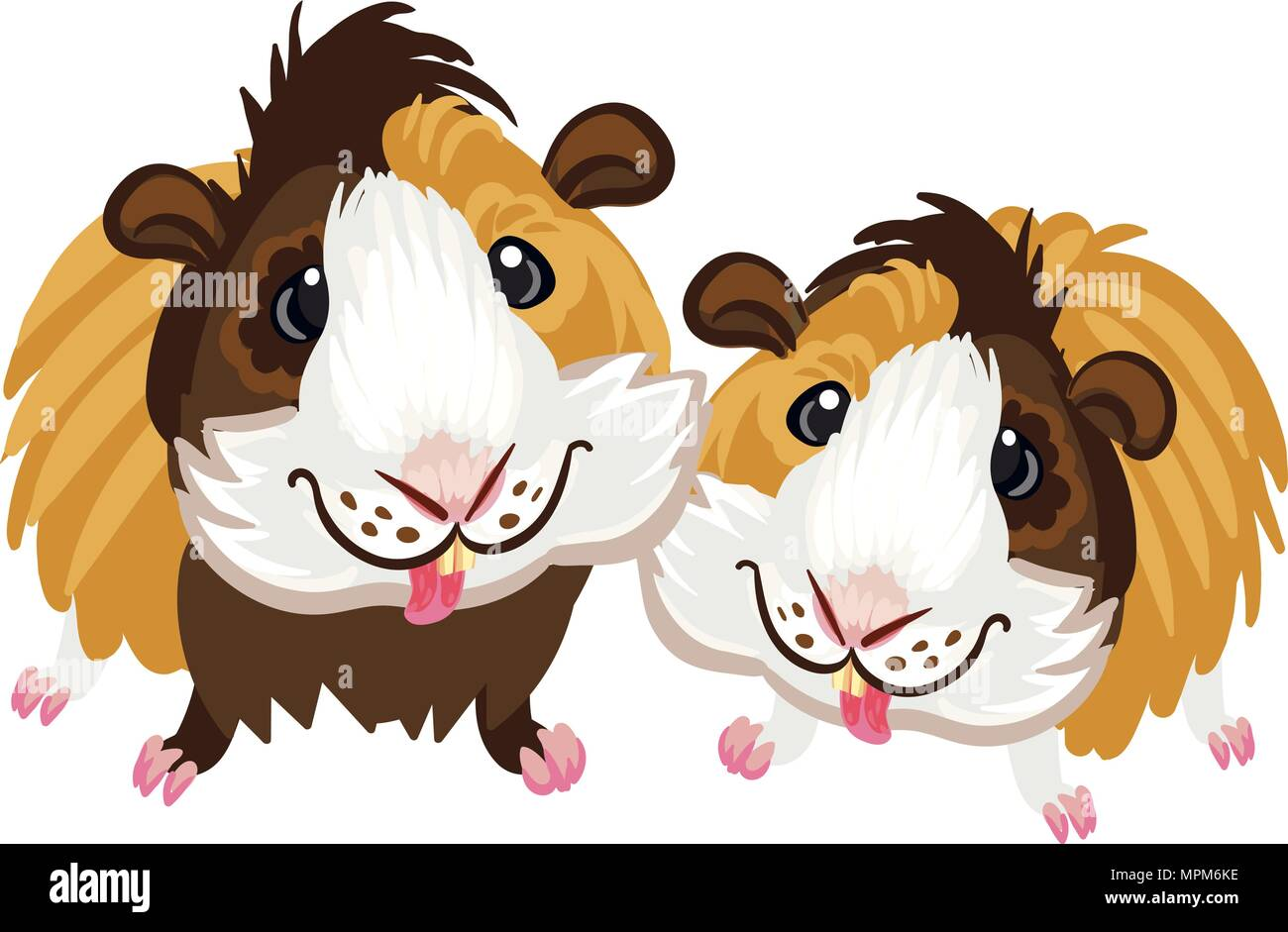 Guinea pig little cute homemade cartoon fun art piggy clipart - Stock Vector