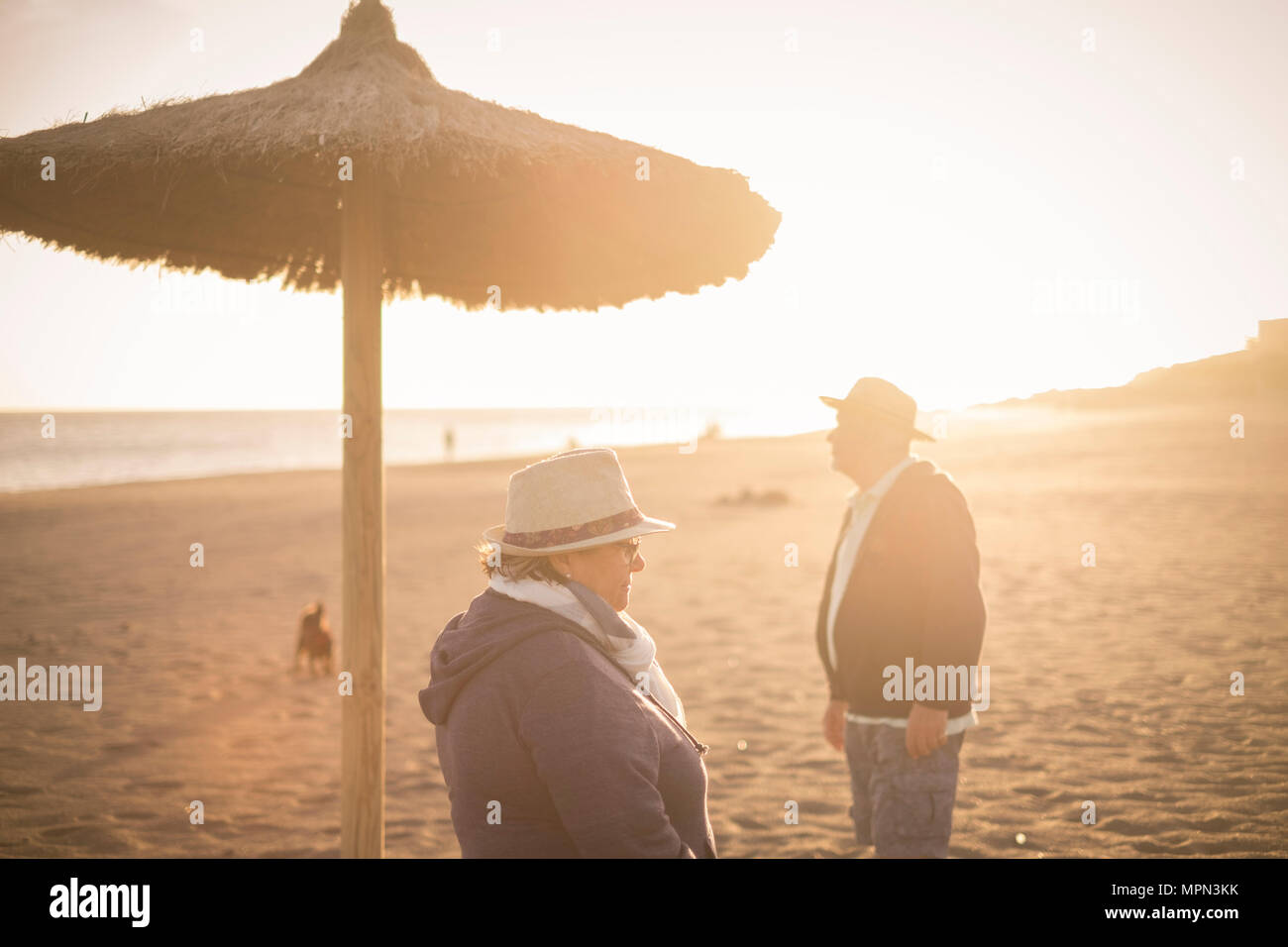 Couple of separated man and woman elderly looking to different separated directions with backlight from the sunset. Thought concept in spring near the - Stock Image