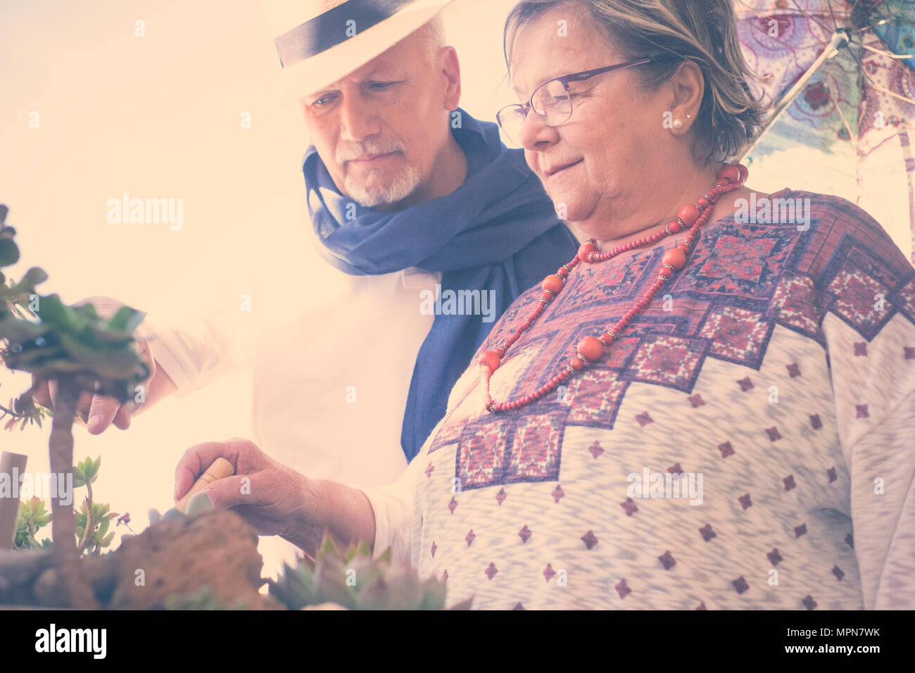 couple of aged adults man and woman have care of their plants at home. colored clothes lifestyle and together daily life concept - Stock Image