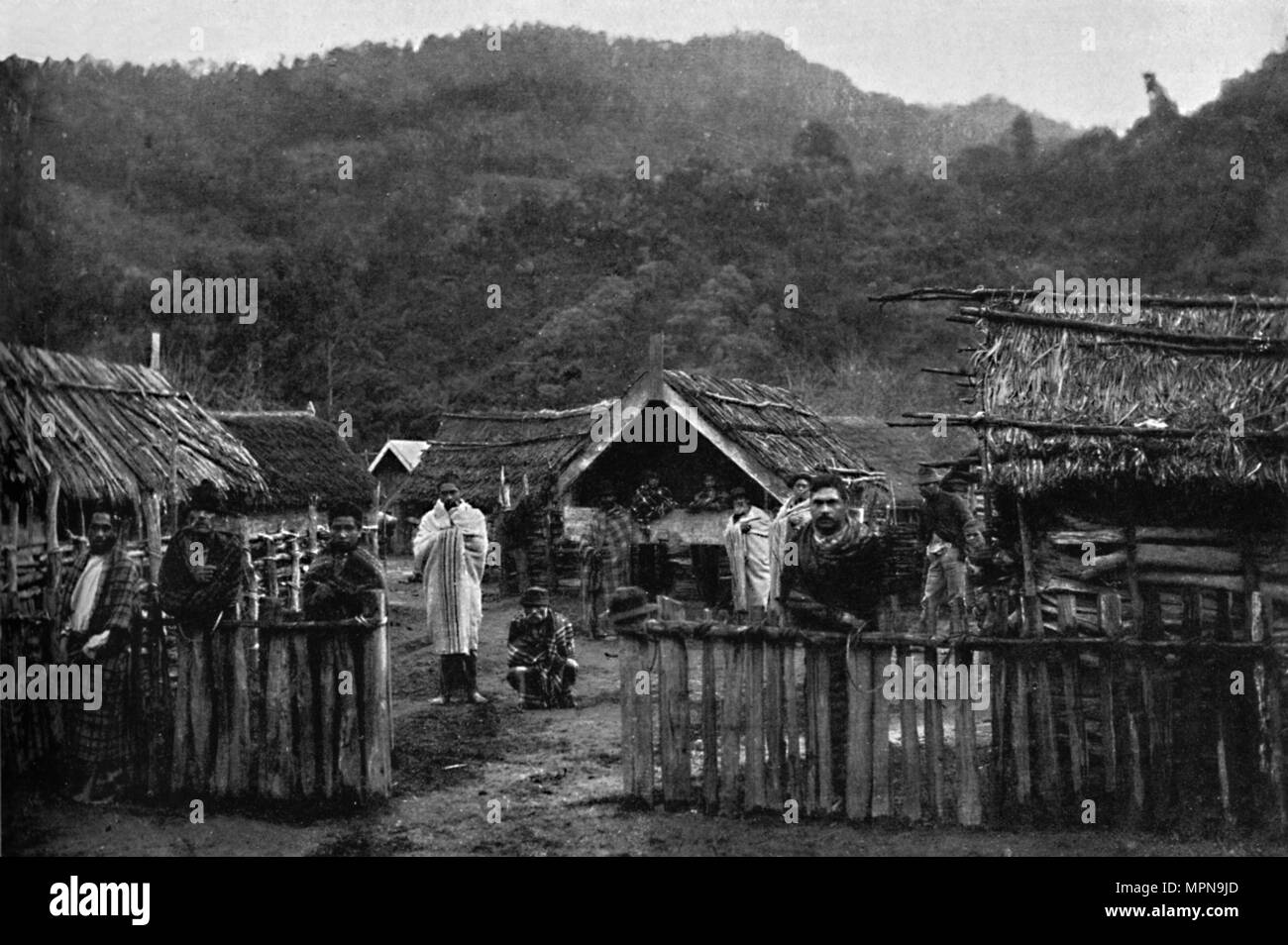 Maori pa, or fortified village, on the Whanganui River, North Island, New Zealand, 1902. Artist: Muir & Moodie. - Stock Image