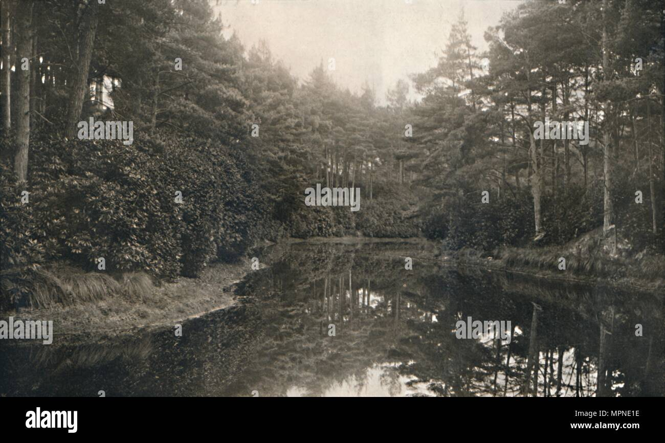 'Branksome Chine and Lake', c1910. Artist: Unknown. - Stock Image