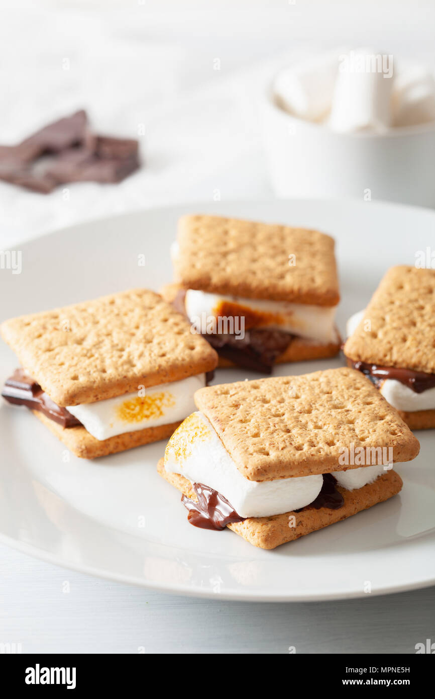homemade marshmallow s'mores with chocolate on crackers - Stock Image