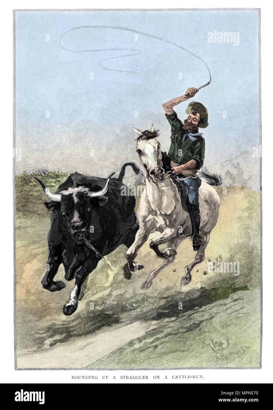 Repro Foto Cowboy bei Rodeo auf Stier