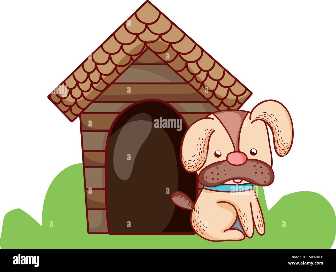 cute dog pet animal with house - Stock Image