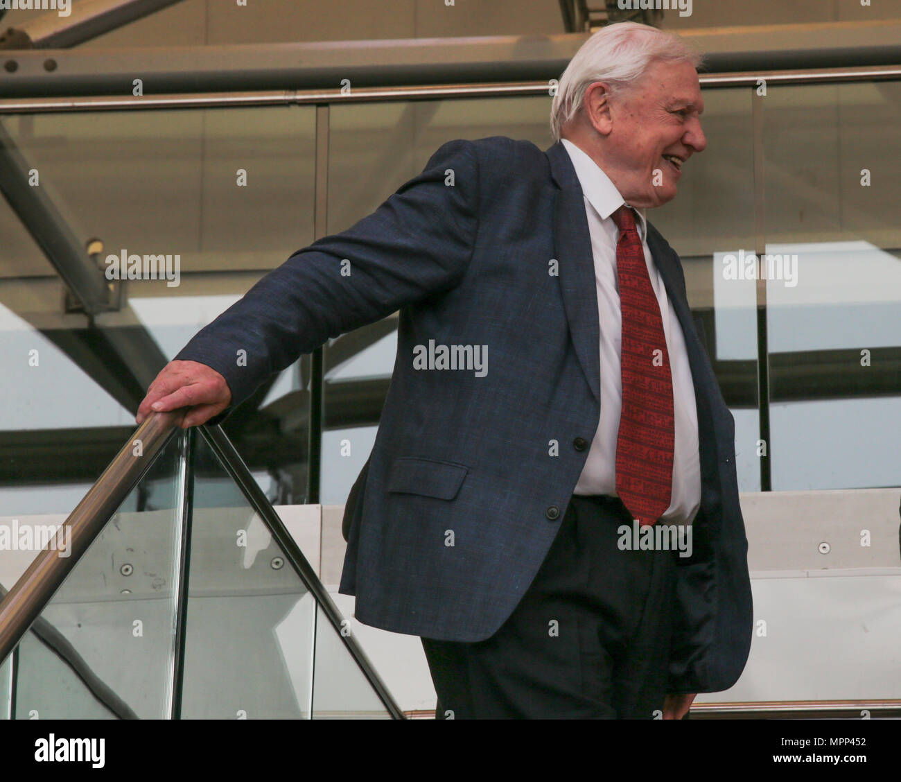 London UK 24 May 2018 Sir David  Attenborough best known for writing and presenting, in conjunction with the BBC natural and wildlife programs ,opening the ABA Rare Book Fair London 2018@Paul Quezada-Neiman/Alamy Live News' - Stock Image