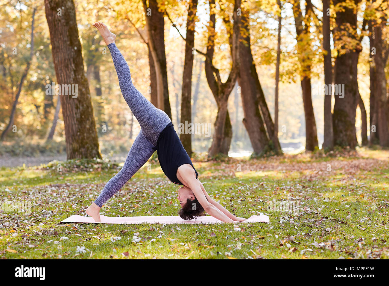 Mid adult woman in forest practicing yoga, downward facing dog position - Stock Image