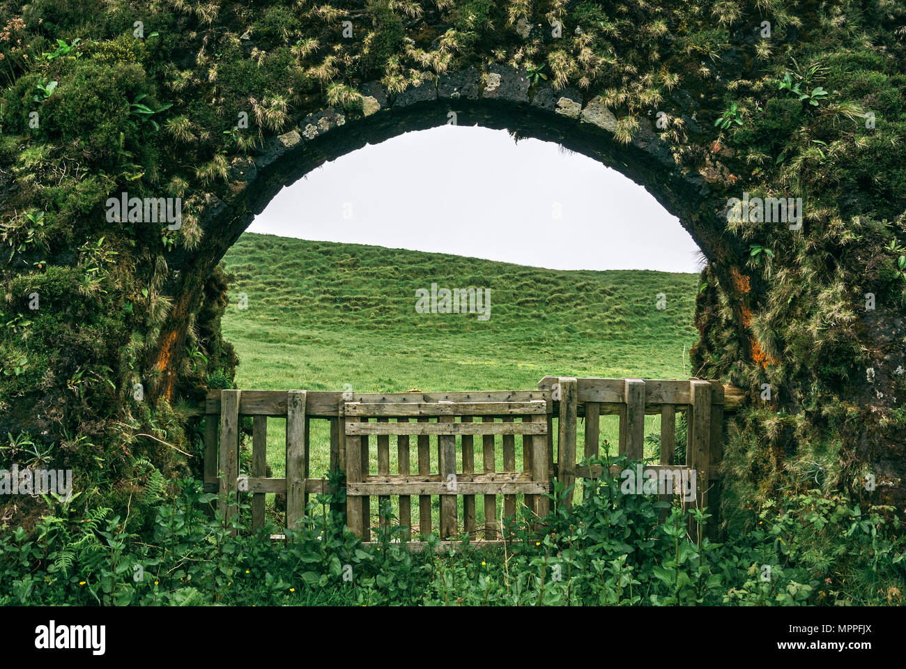 A fence in one of the arches of the the old aqueducts at São Miguel Island, Azores. - Stock Image