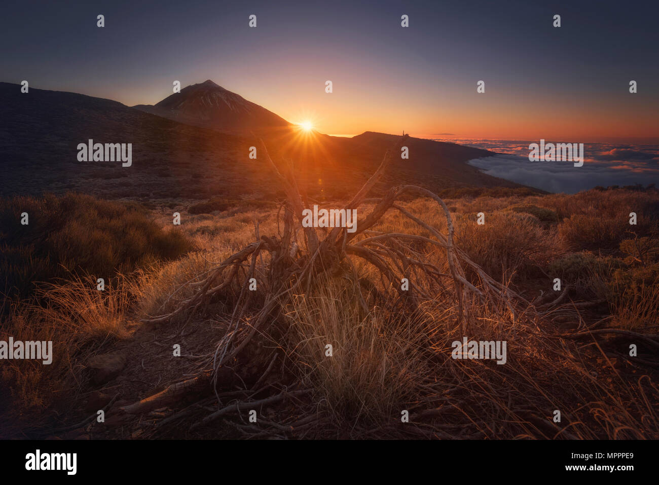 Spain, Canary Islands, Tenerife, Teide National Park at sunset Stock Photo