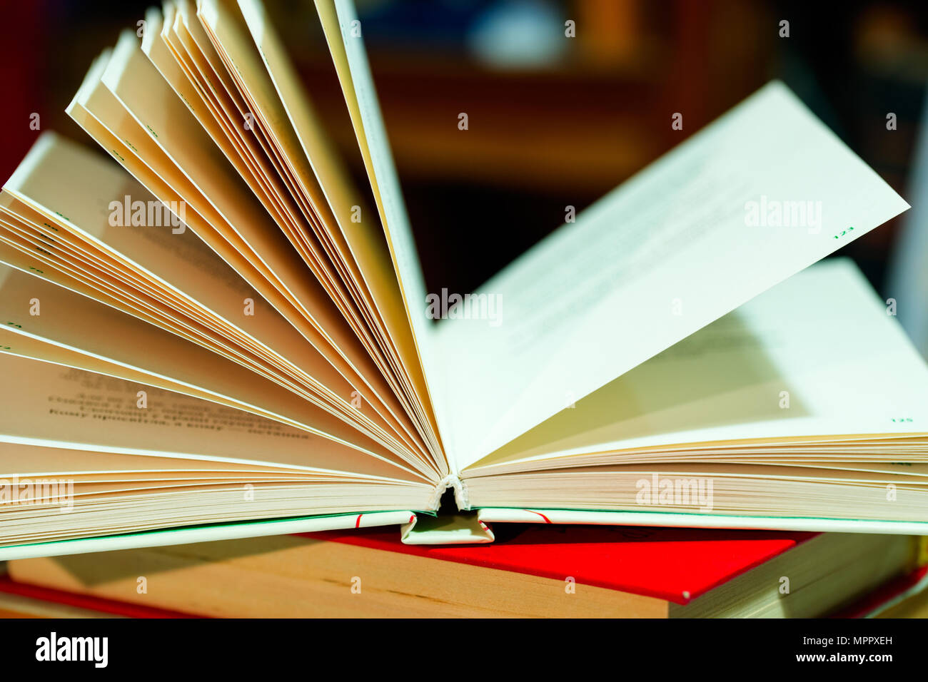 Open book on table. Back to school. Copy space - Stock Image