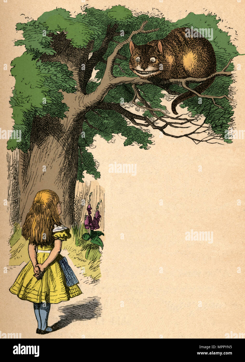 'Alice and the Cheshire Cat', 1889. Artist: John Tenniel. - Stock Image