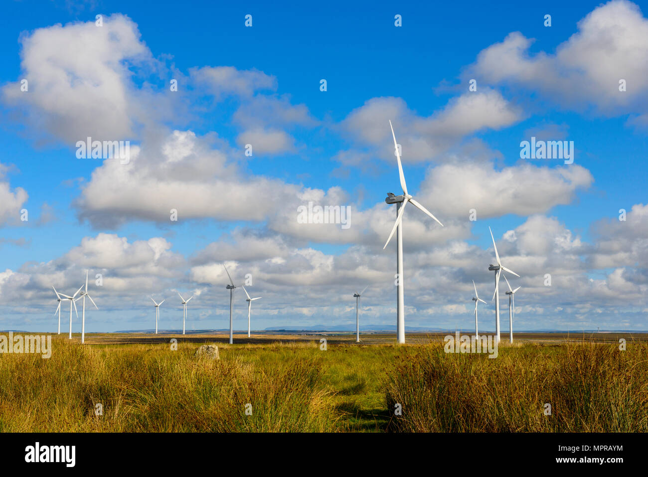 United Kingdom, Scotland, Highland, Lybster, wind park Stock Photo