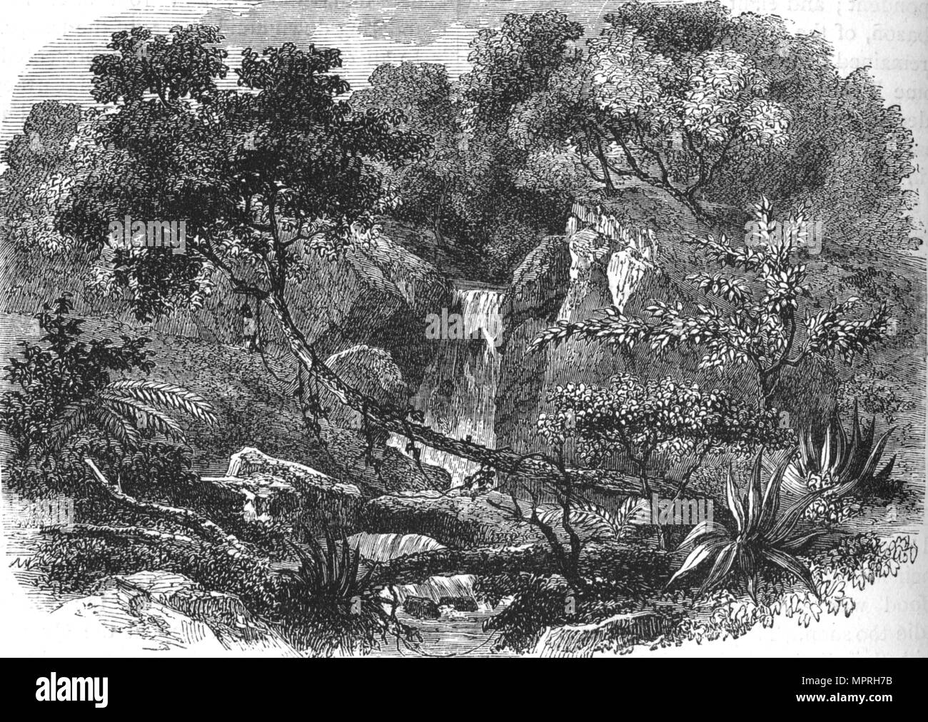 'New Zealand Landscape', c1880. Artist: Unknown. - Stock Image