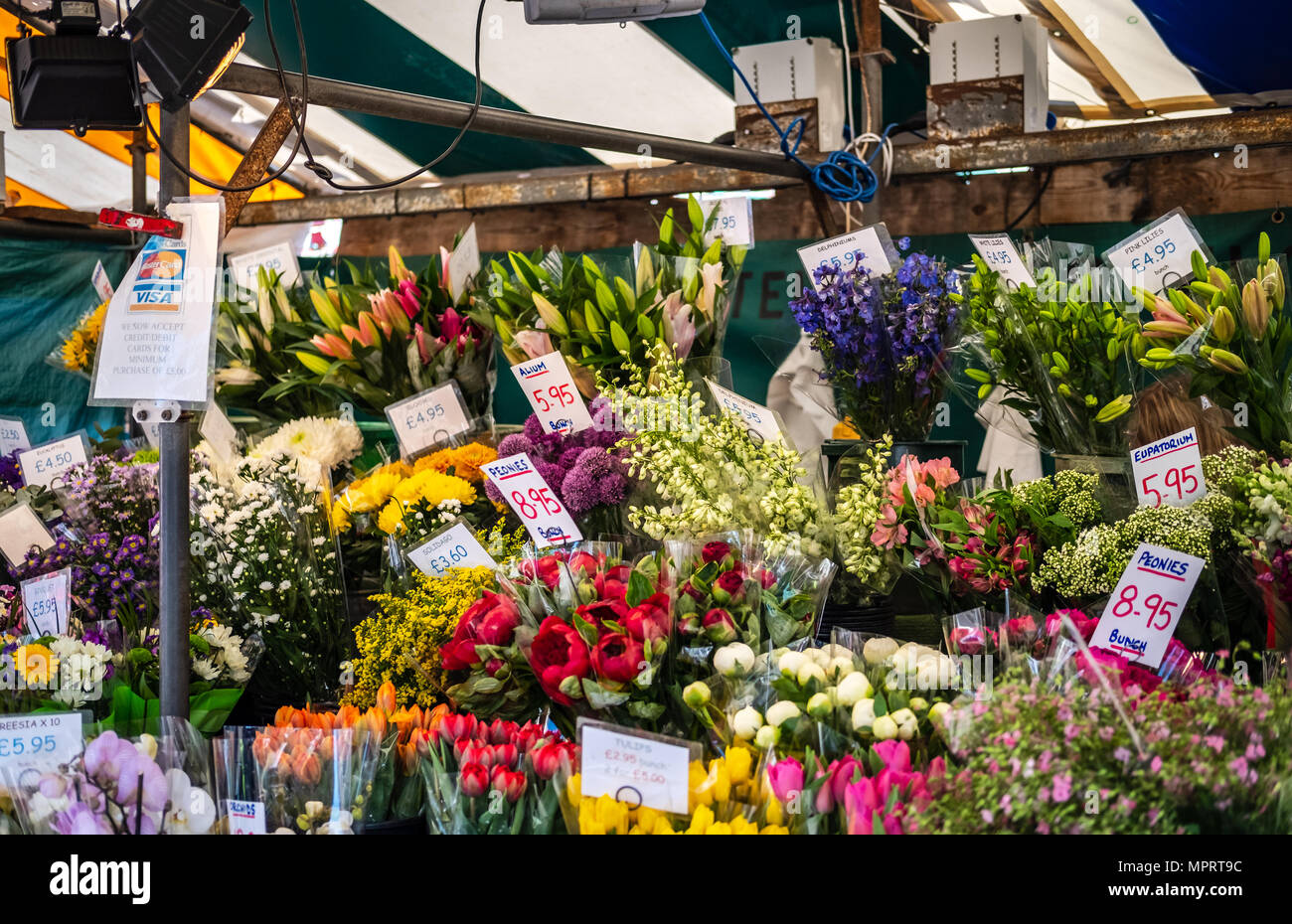Large, colourful selection of various plants and flowers seen for sale within a flower stall in an open air market. - Stock Image