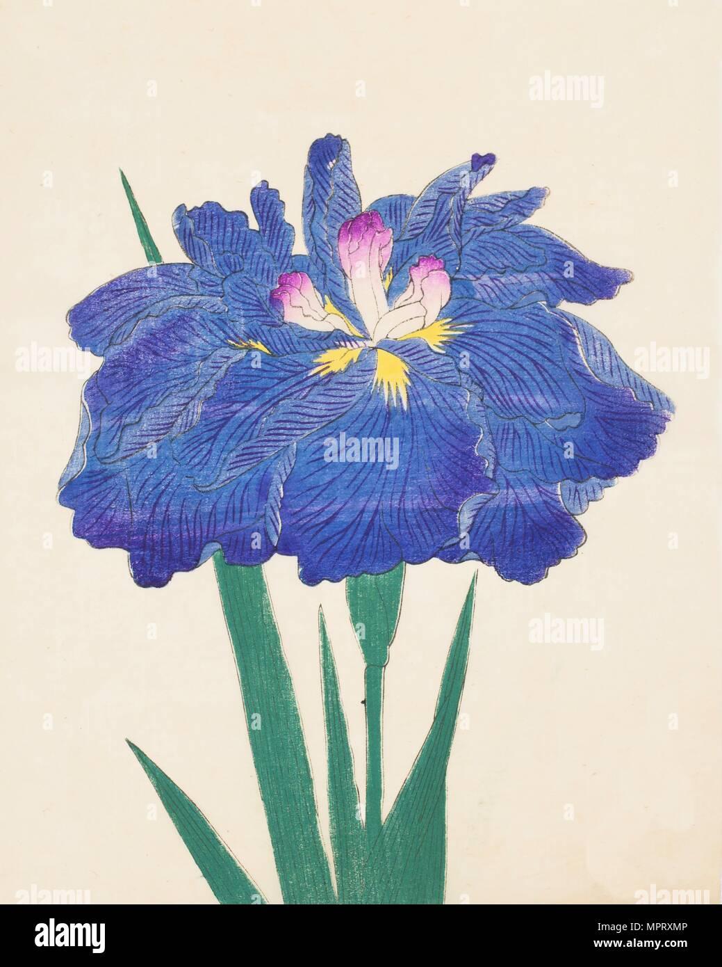 Karako-Asobi, No. 42, 1890, (colour woodblock print) - Stock Image