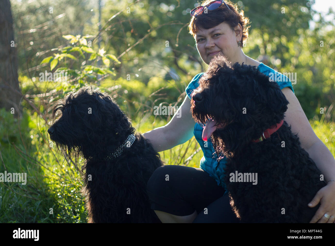 A woman and her two black Russian Terriers are on a walk in the Park - Stock Image