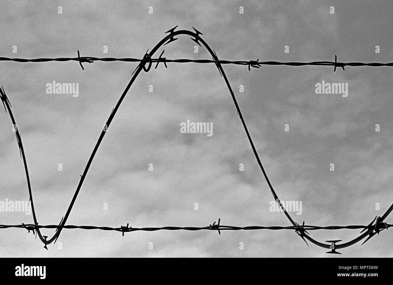One strand of barbed wire winds around two other wires and forms a sine wave silhouetted against the sky. (Scanned from black and white film.) - Stock Image