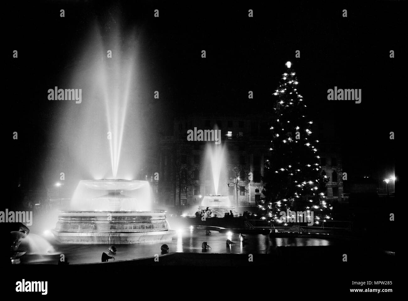 Londons Christmas Tree In Trafalgar Square Is Donated Each Year By Which Country.Fountains And The Christmas Tree In Trafalgar Square London