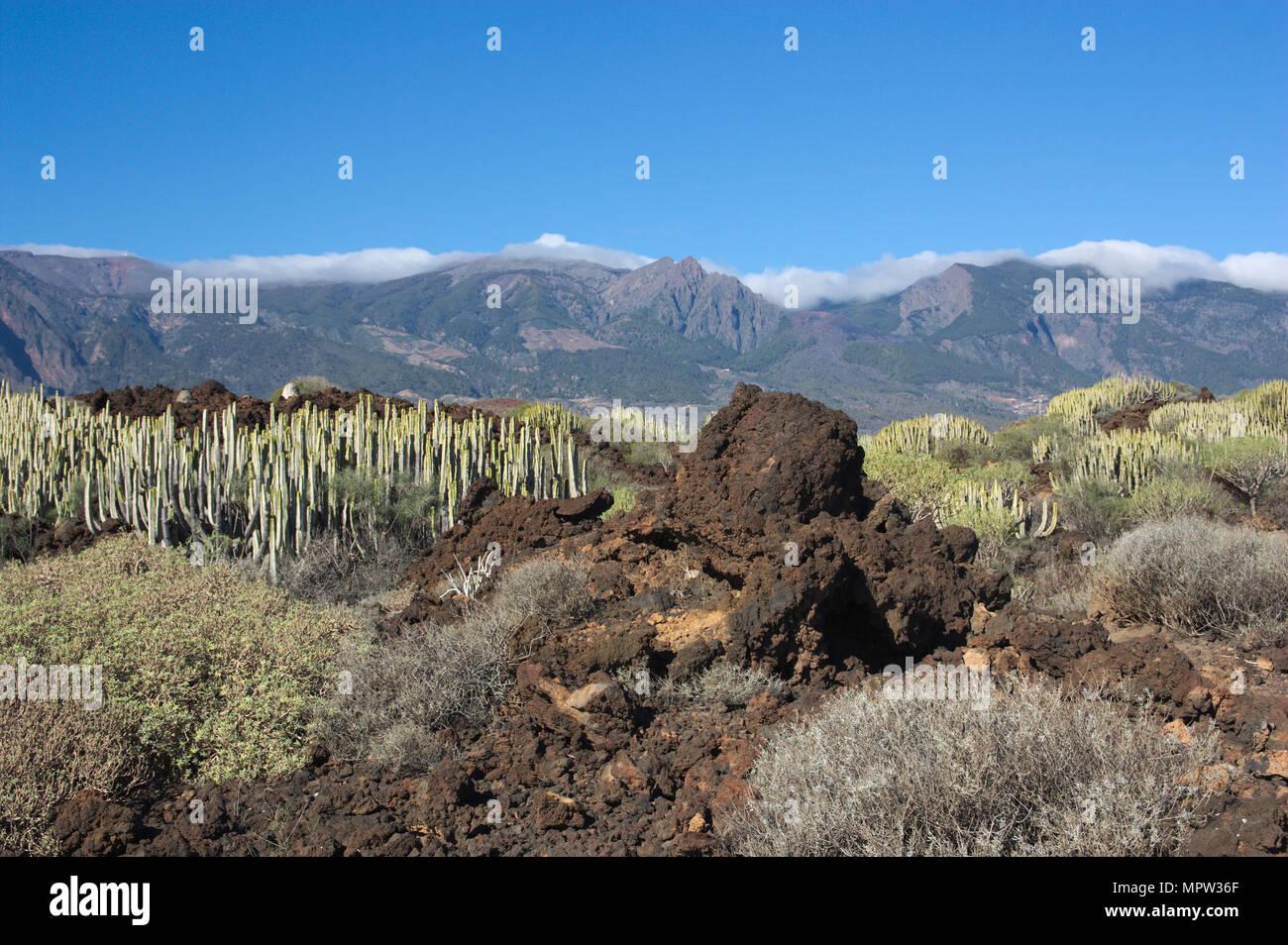 View of the volcanic mountains of Tenerife in the Malpaís. Santa Cruz de Tenerife. Spain - Stock Image