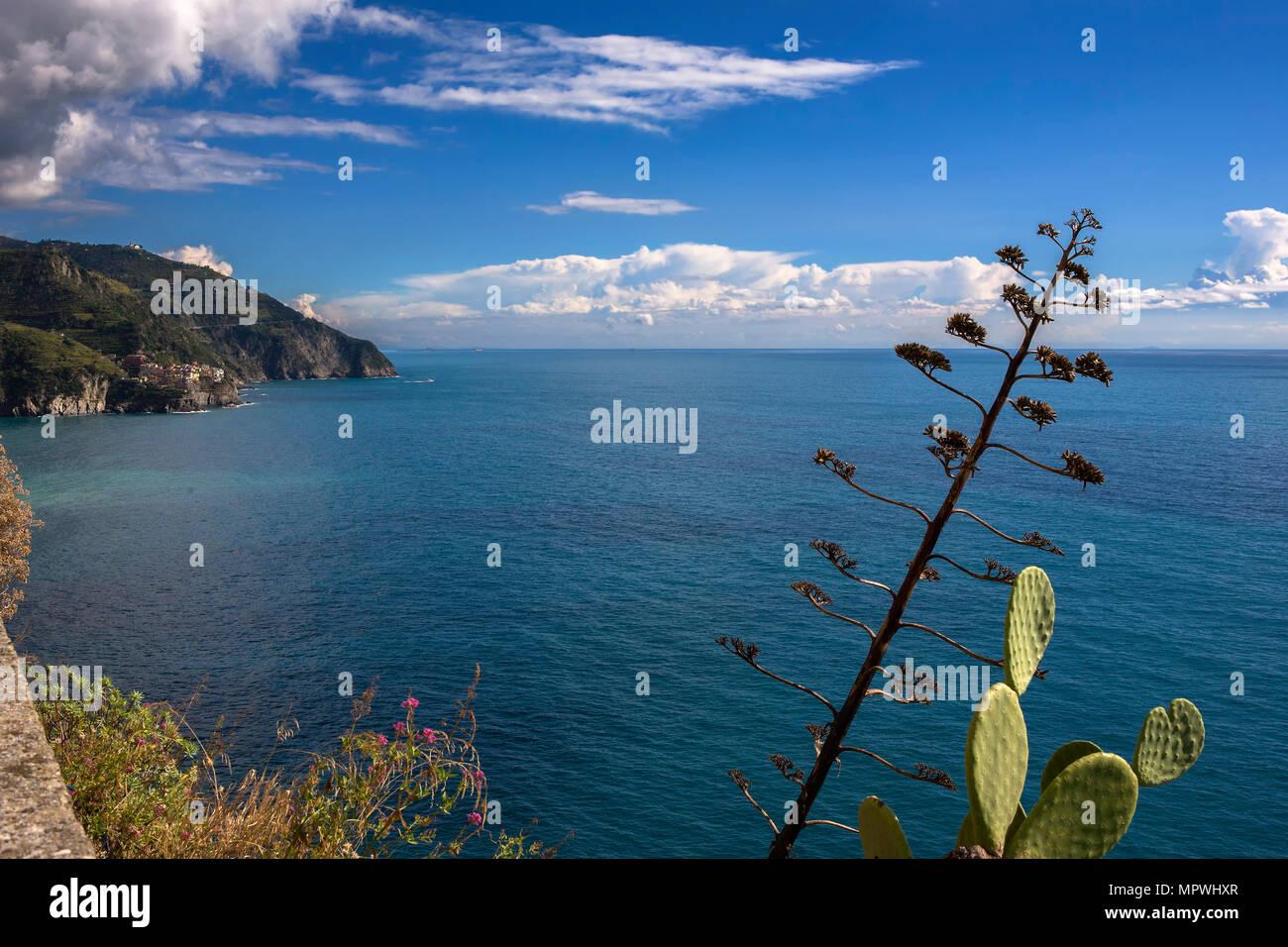 The coast of the Cinque Terre from the Terrazza Santa Maria ...