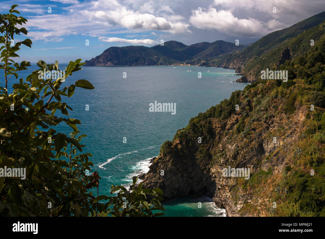 The coast of the Cinque Terre looking north from the Terrazza Santa ...