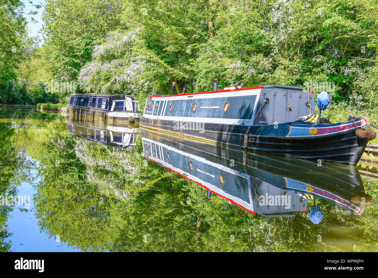 Narrow boat moored to the towpath on a sunny spring day at the Market Harborough arm of the Grand Union canal, England. - Stock Image