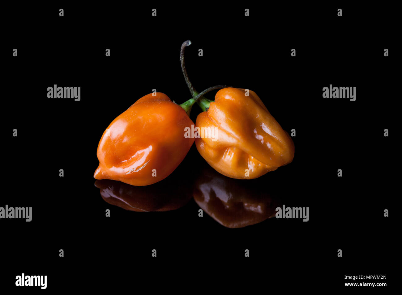 Two yellow hot habanero peppers on black background with reflection Stock Photo