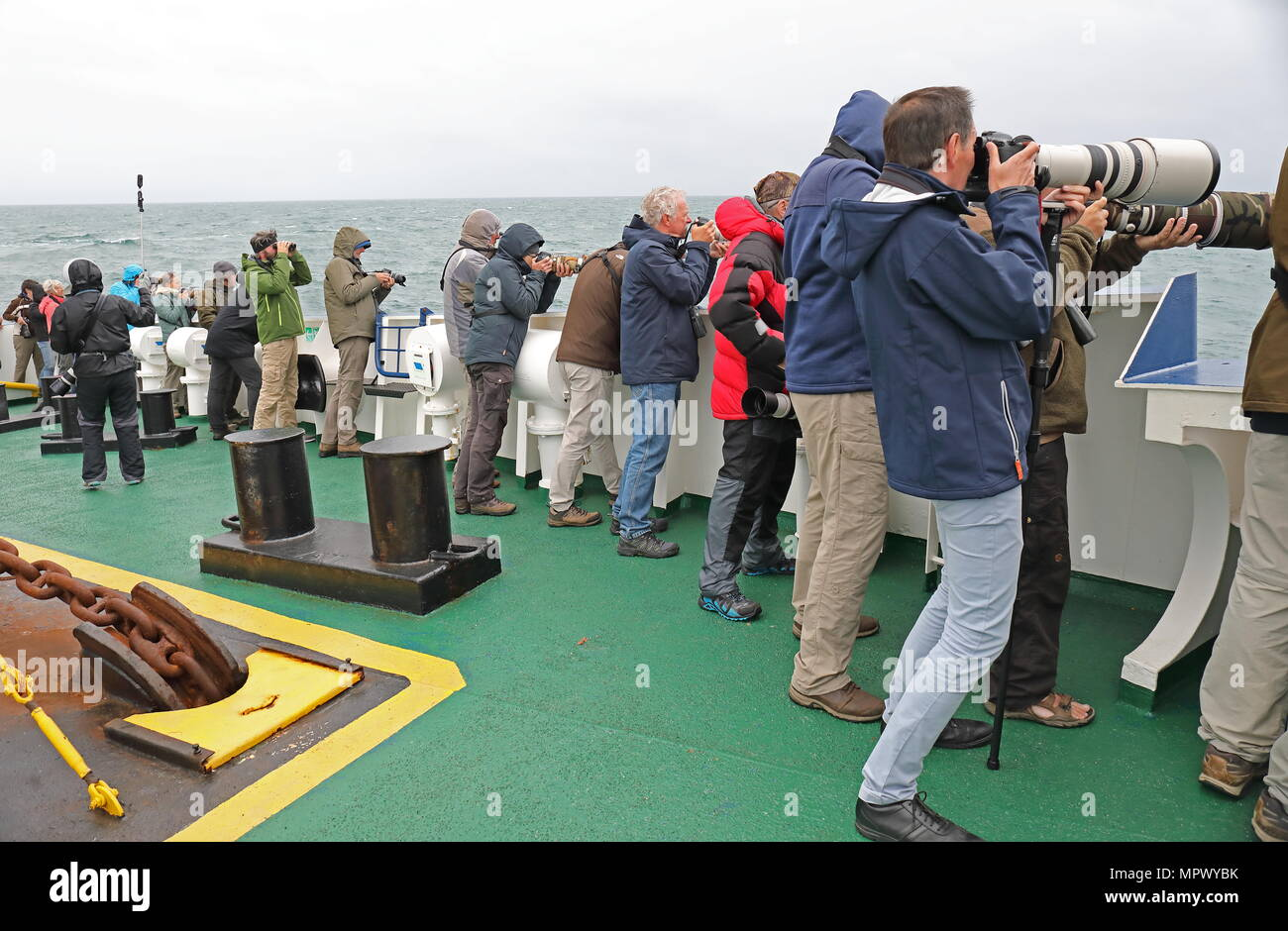 wildlife photographers photographing seabirds from ship  At sea, Bay of Biscay                  May - Stock Image