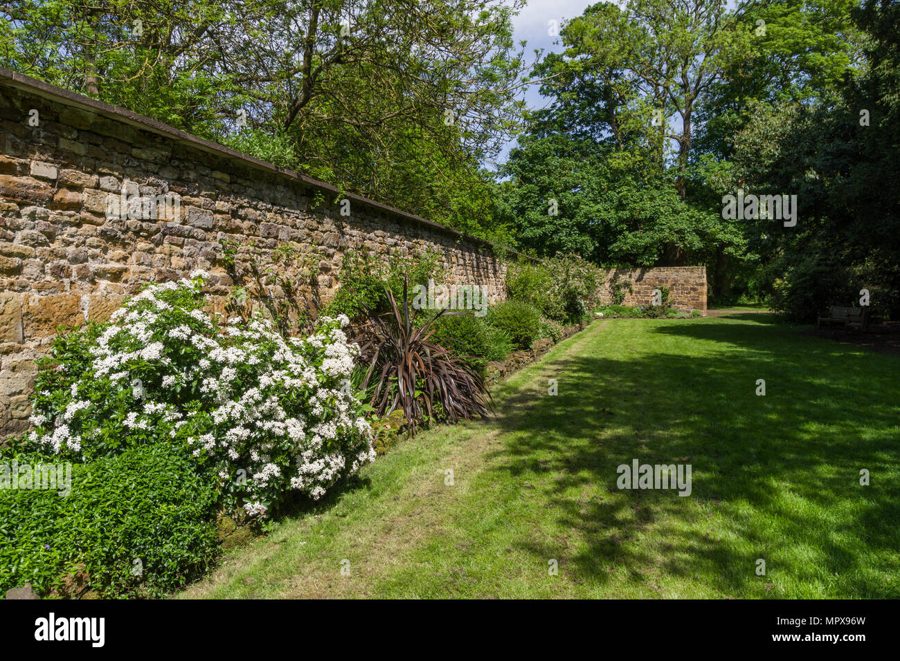 A Spring border against an old stone wall in the gardens of Delapre Abbey, Northampton, UK