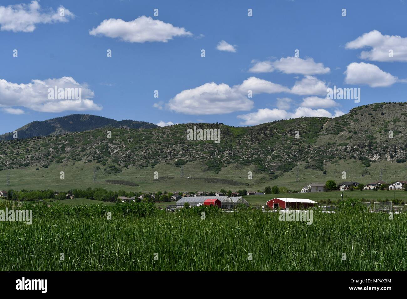 Rural community seen from Denver Botanic Gardens at  Chatfield Farms - Stock Image
