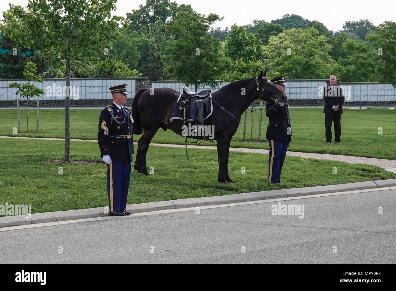 Riderless Horse at Military Funeral at Arlington National Cemetery - Stock Image