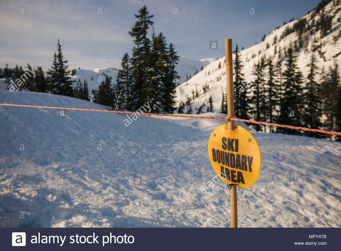 Ski sign on wooden stick at North Cascades National Park during winter - Stock Image