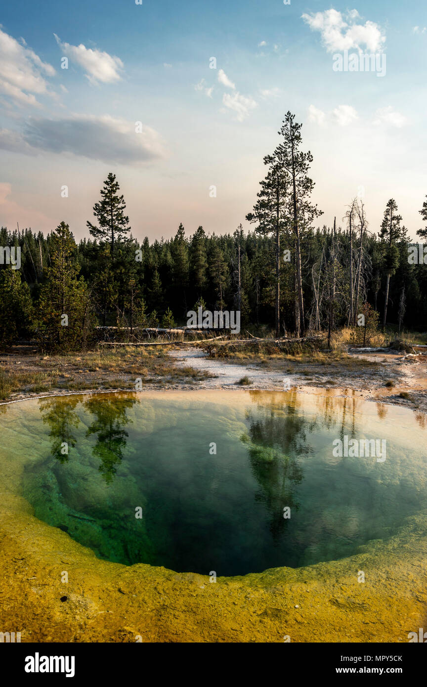 Scenic view of hot spring by trees against sky at Yellowstone National Park during sunset - Stock Image