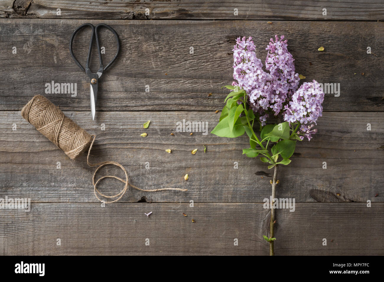 Overhead view of flowers with string and scissors on wooden table - Stock Image
