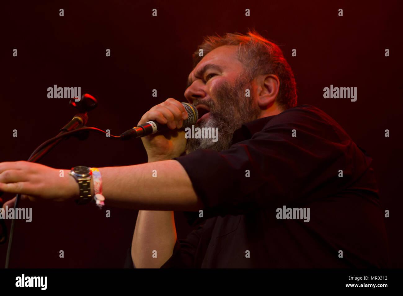 Arab Strap performin at music festival - Stock Image