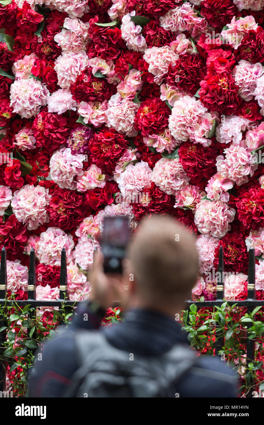 London, UK. 25th May 2018. Annabel's private members club in Mayfair currently adorned with thousands of flowers timed to coincide with the RHS Chelsea Flower Show. Credit: Guy Corbishley/Alamy Live News - Stock Image