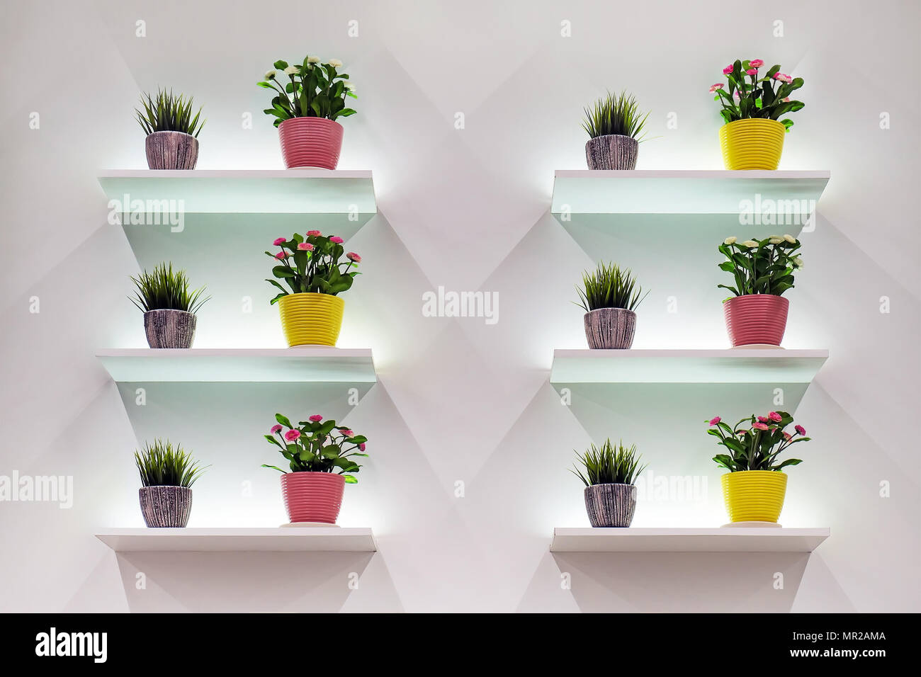 position of flowers on white wall background various flowers in a small pot shelves white with backlight MR2AMA