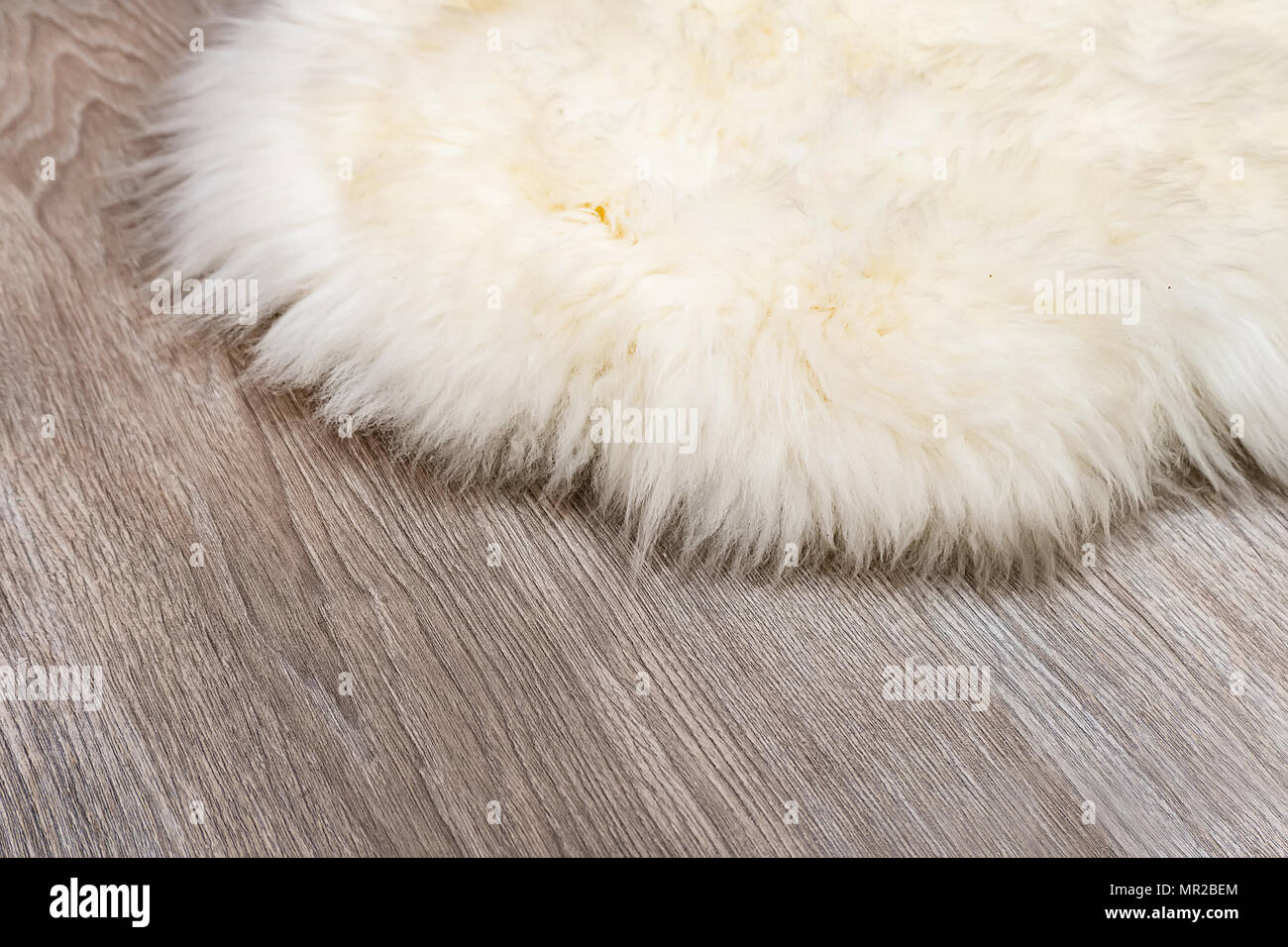 Decorative fur carpet on wood floor background. White animal skin on the parquet floor in the apartment. Mat made of natural rabbit skin. - Stock Image