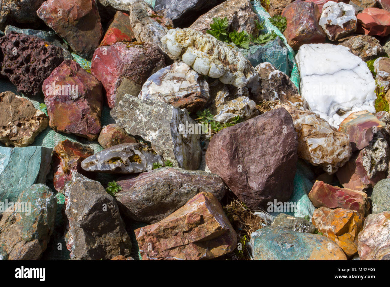 Minerals or clasts, igneous, sedimentary and metamorphic rocks of Iceland - Stock Image