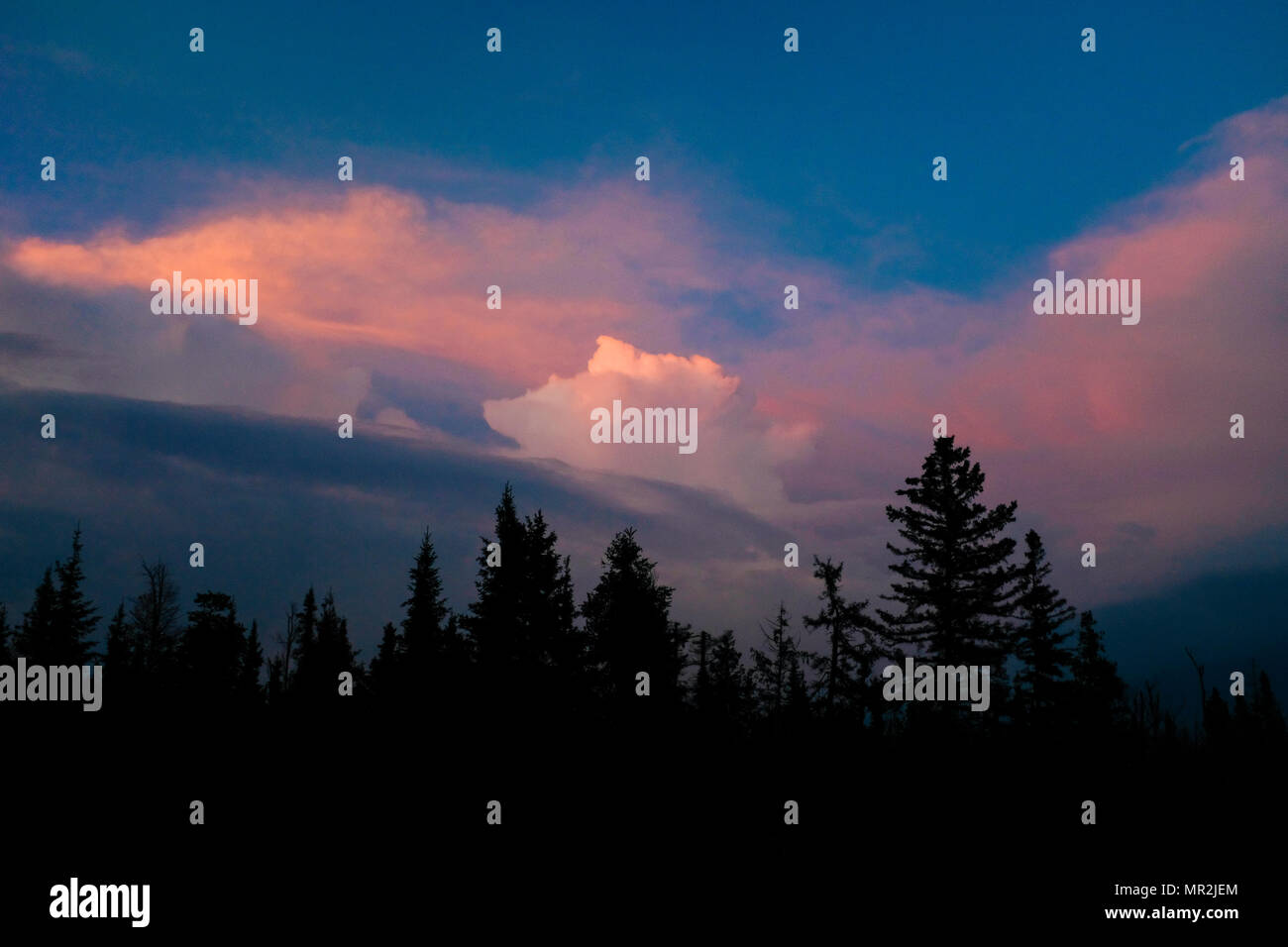 The end of storm clouds painted the sky vivid colors as the sunsets over the woods of northern Wisconsin, USA - Stock Image