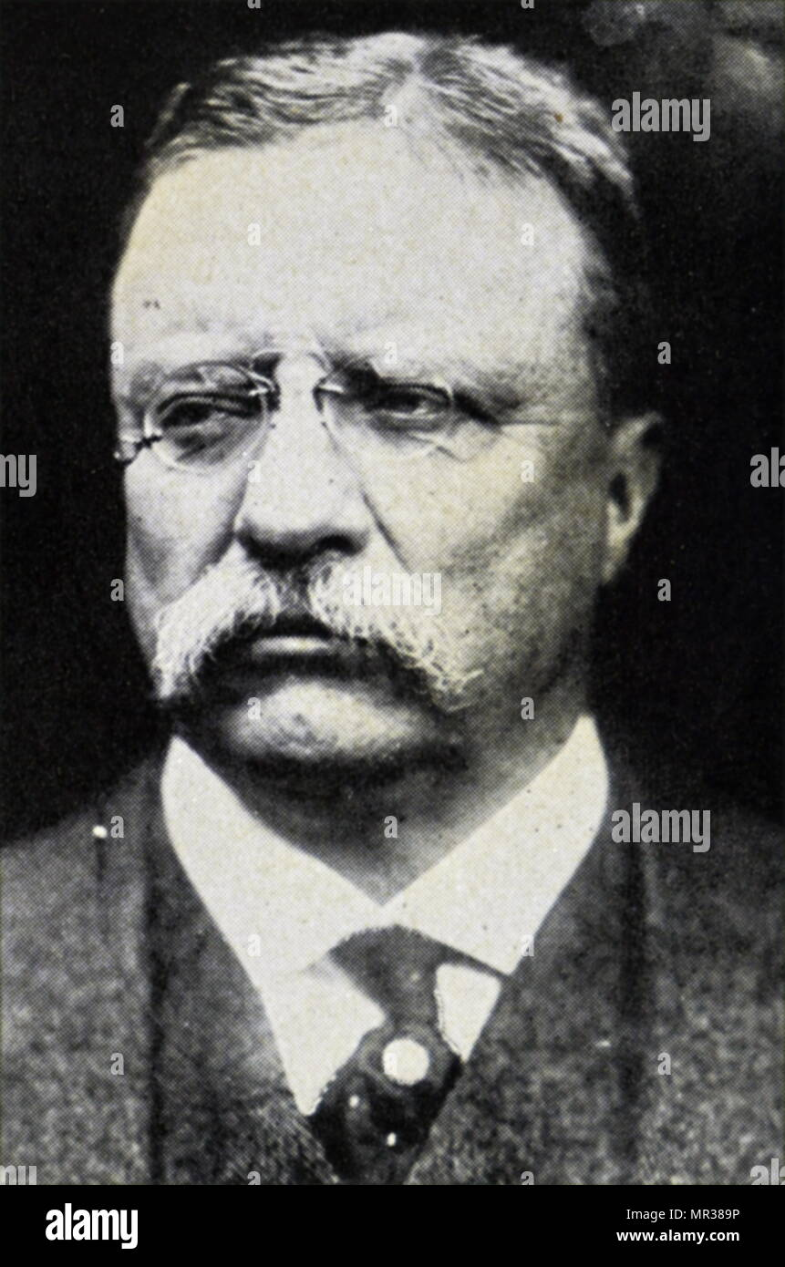 life of theodore roosevelt who served as the 26th president of the united states Roosevelt became vice-president of the united states and assumed the presidency after the assassination of william mckinley in 1901 at 42, he was the youngest us president ever.