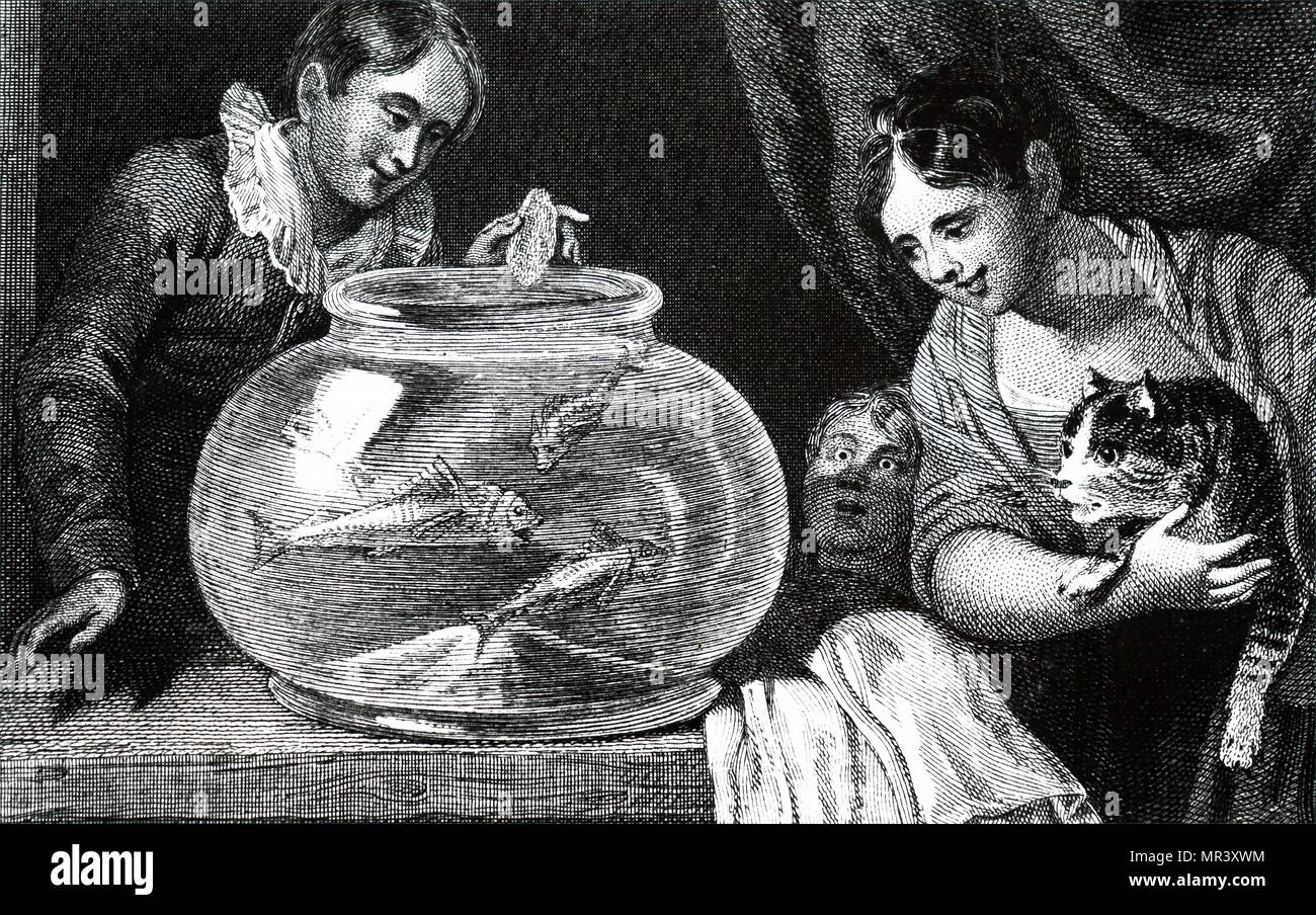 Copperplate print after an illustration by William Marshall Craig. The print depicts children feeding their goldfish. William Marshall Craig (1765-1827) an English painter. Dated 19th century - Stock Image